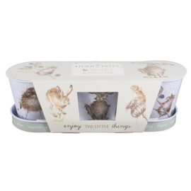 Wrendale Set of 3 Herb Pots - hare/ mouse