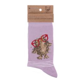 """Wrendale sokken """"Spectacular""""- uil"""