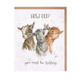 "Wrendale greeting card ""How Old?"" - geiten"