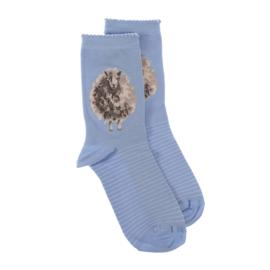 """Wrendale sokken """"The Woolly Jumper""""- schaap"""