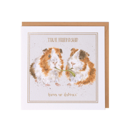 "Wrendale greeting card ""True Friendship"" - cavia"