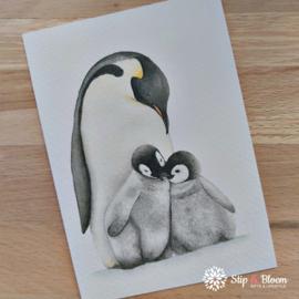 Appeloogje ansichtkaart - pinguins