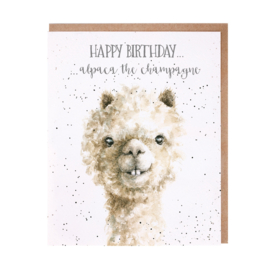 "Wrendale greeting card ""Alpaca the Champagne"""