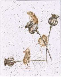 "Wrendale mini card ""Country Mice"" - muizen"