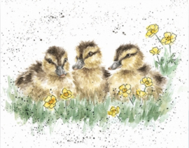 "Wrendale mini card ""Buttercup"" - eendjes"