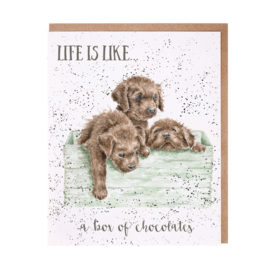 "Wrendale greeting card ""Box Of Chocolates"" - labrador"