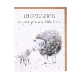 "Wrendale greeting card ""Little Lamb"""
