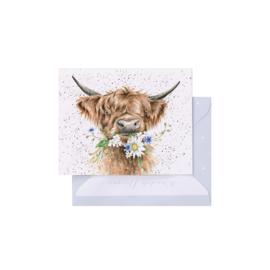 "Wrendale mini card ""Daisy Coo"" - hooglander"