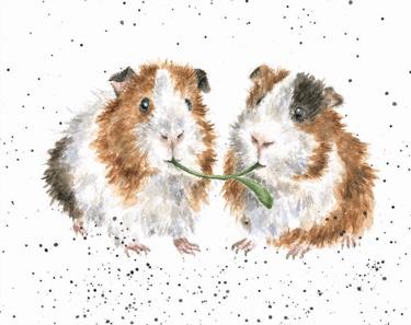 """Wrendale mini card """"Lettuce be Friends"""" - cavia's"""