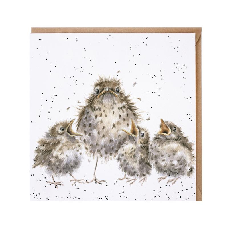 "Wrendale greeting card - ""Frazzled"" - vogels"
