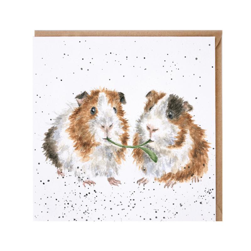 """Wrendale greeting card - """"Lettuce be Friends"""" - cavia"""
