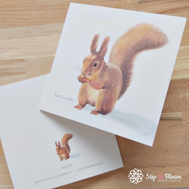 Dubbele kaart - eekhoorn