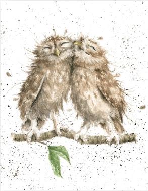 "Wrendale mini card ""Birds of a Feather"" - uilen"