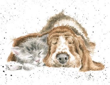 "Wrendale mini card ""Dog & Catnap"" - hond en poes"
