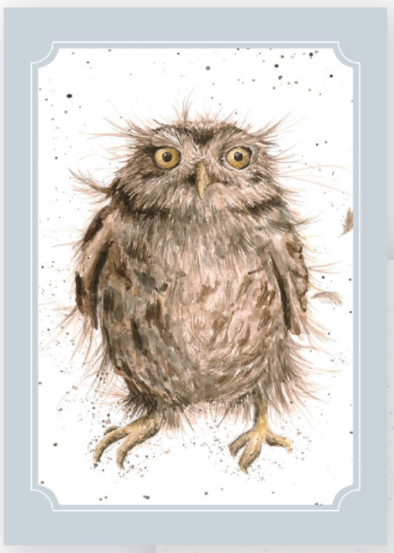 "Wrendale postcard ""What a Hoot"" - uil"