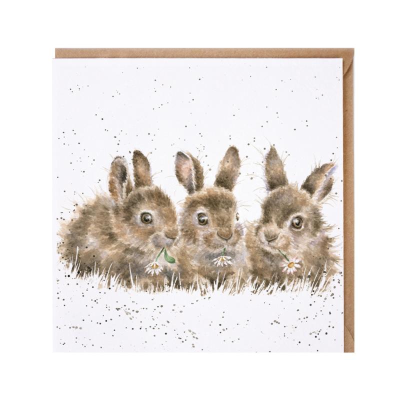 "Wrendale greeting card - ""Daisy Chain"" - konijnen"