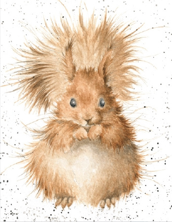 "Wrendale mini card ""Redhead"" - eekhoorn"