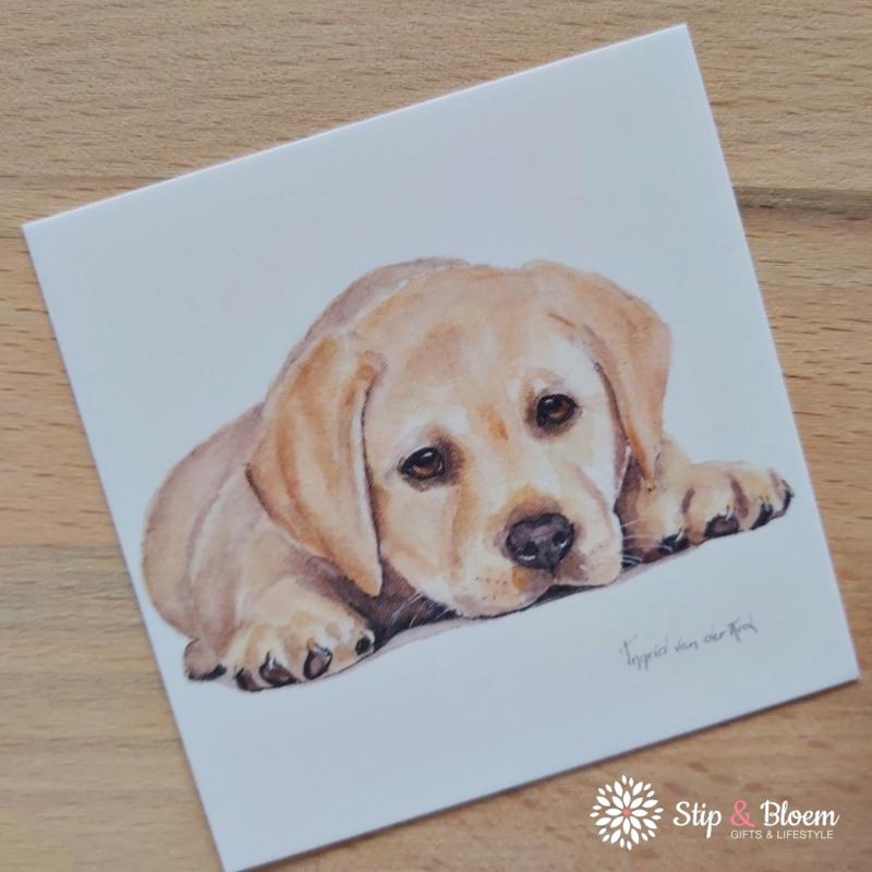 Minikaartje - puppy
