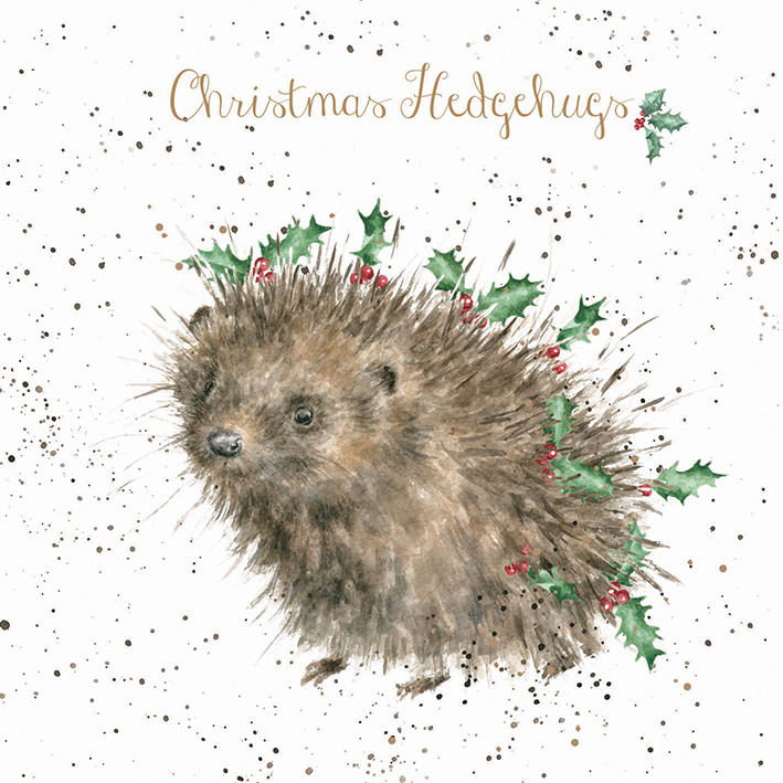 """Wrendale Boxed Christmas Cards  """"Christmas Hedgehugs"""""""