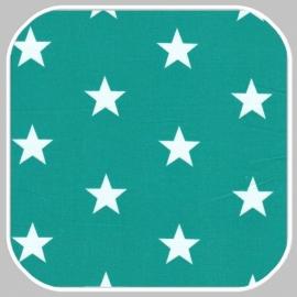 ster | M | blauw-groen
