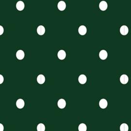 Tricot Stip | Groen