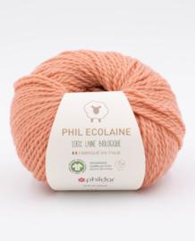 Phil Ecolaine - RoseThe