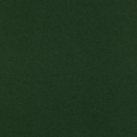 tricot jeans uni | 02530.018 | Dark green