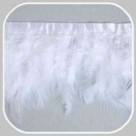 band veren wit/10 cm hoog