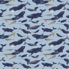 Dolphins | lichtblauw | ideaal voor zwembroeken