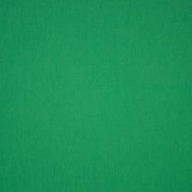 Tricot Jeans Uni | GOTS |  Applegreen