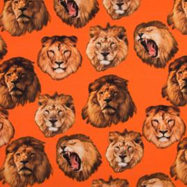 Tricot Digitaal | Oranje - Leeuw
