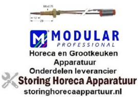202102127 - Thermokoppel met twee geleiders L 600mm MODULAR