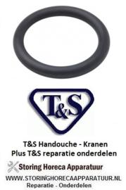 324594261- T&S O-Ring