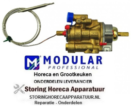 569101172 - Gasthermostaat 100 - 300°C MODULAR