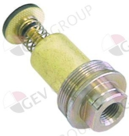 101054 - Magneetspoel Dr.G1: M10x1 Dr.G2: M24x1 L 45mm, ø 17mm passend voor Minisit