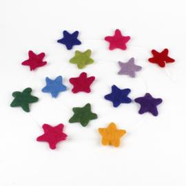 Viltslinger ster multicolor