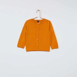 Babyvestje oranje