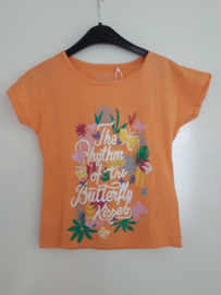 T-shirt BUTTERFLY oranje mt 92 tm 122/128