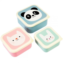 Lunchbox set Panda - Poes -Konijn