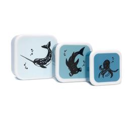 Lunchbox set Sea Animals - Petit Monkey