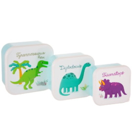 Lunchboxset Roarsome Dinosaurs Sass & Belle