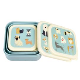 Lunchbox set Show Honden - Rex London