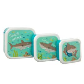 Lunchboxset Haai - Sass & Belle