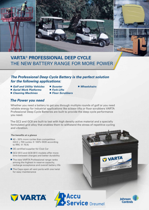 VARTA Professional Deep Cycle GC2-3 accu 6V 232Ah 300232000 Trojan T105