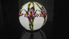Lamp Paarse Iris