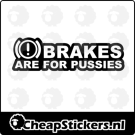 BRAKES FOR PUSSIES STICKER