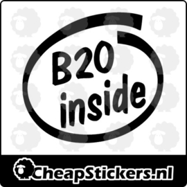 B20 INSIDE STICKER