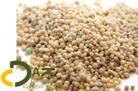 Sedum Autumn voeding sedumblend (najaar) 1kg prijs per emmer