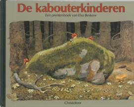 De kabouterkinderen | prentenboek