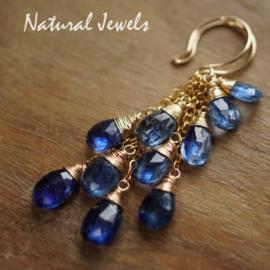 Blauwe edelsteen oorbellen in goud
